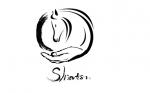 Shiatsu Equin Alsace